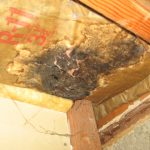water damage cleanup woodbury, water damage woodbury, water damage repair woodbury, water damage restoration woodbury