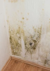 Water Damage Restoration Woodbury, Water Damage Woodbury, Water Damage Cleanup Woodbury